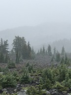 Pct day 121