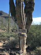 Baja day 24